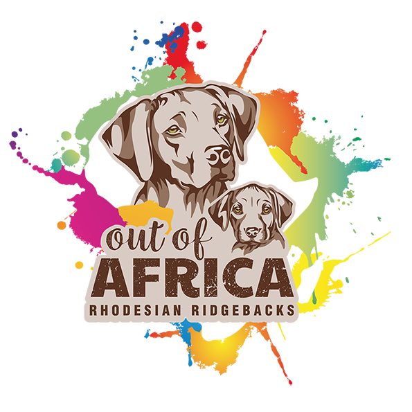 Ridgeback-outofafrica.de